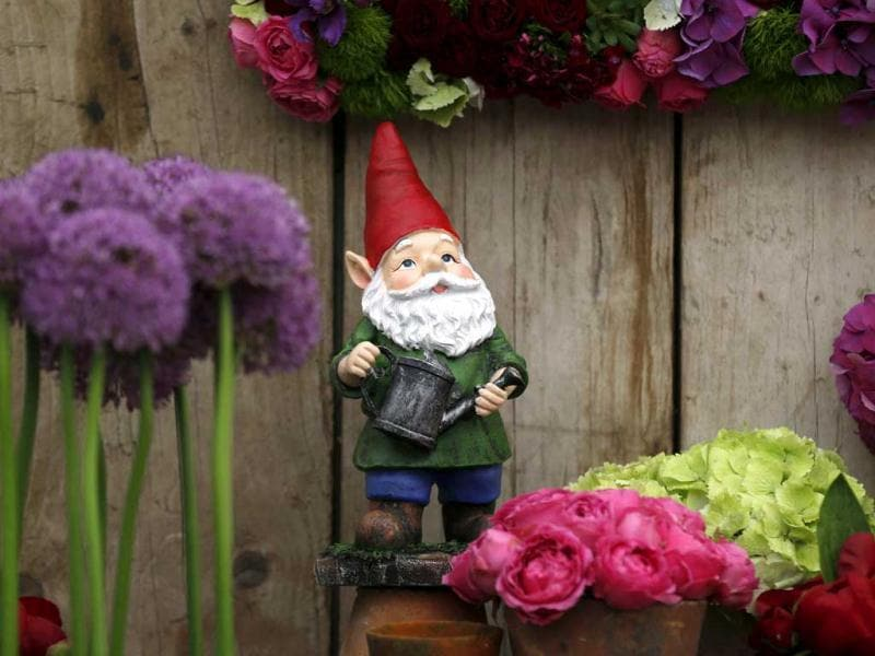 A garden gnome is seen at a flower display stand during the Chelsea Flower Show in London. AP Photo