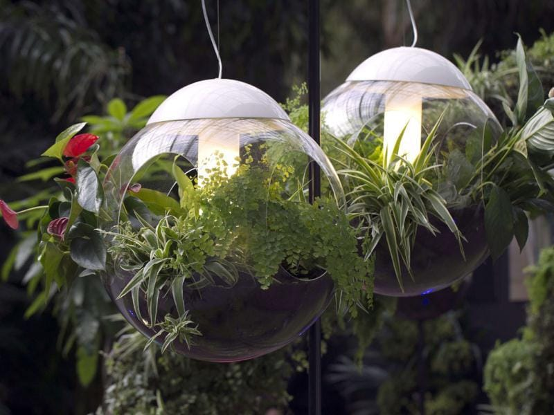 This picture shows ceiling lights with plants at the Grand Palais in Paris, two days before the opening of an exhibition. (AFP)
