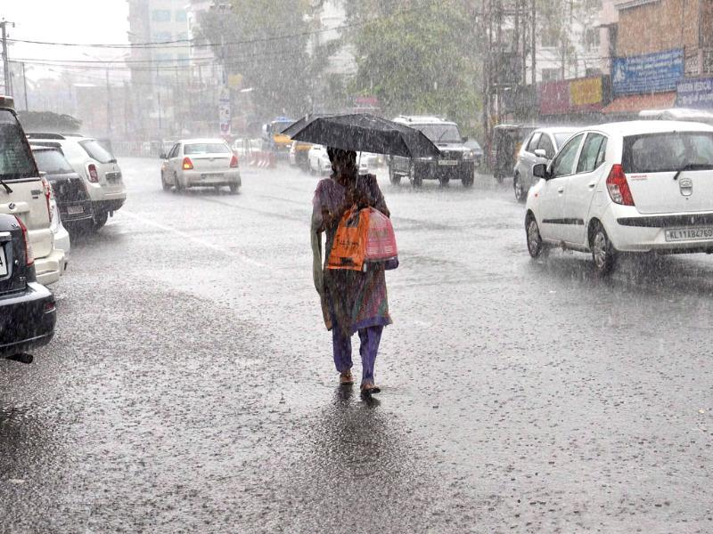A woman walks with an umbrella on a rainy day in Kochi. PTI