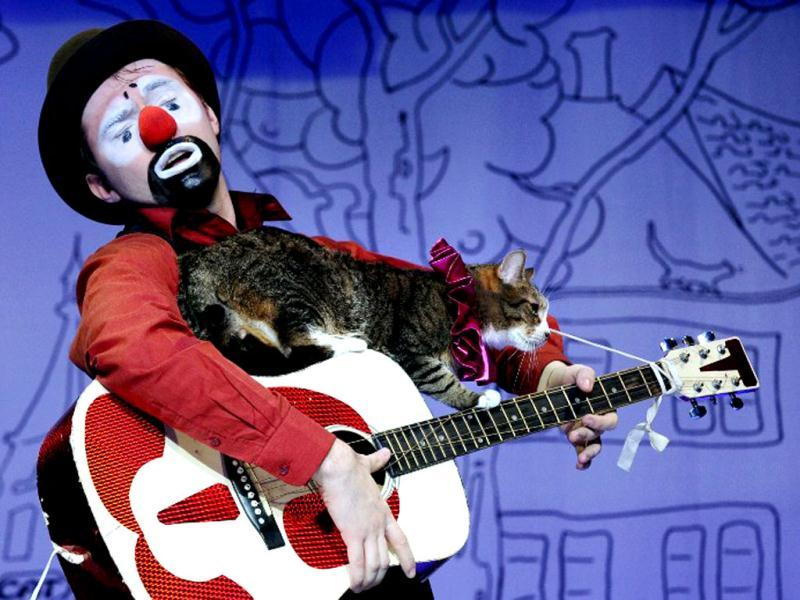 A clown performs with a cat during a show in the Moscow Cat Theatre, founded shortly before the fall of the USSR by famous Russian clown Yuri Kouklatchev. The theatre entertains its patrons throught performances by twenty cats, a dog and a few clowns on stage. (AFP)