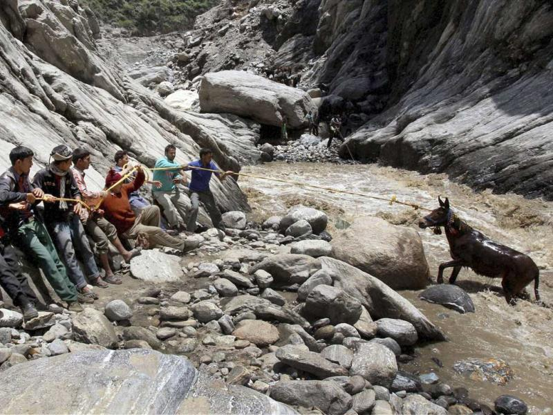 People rescue a pony with the help of a rope from the Mandakini river at Gauri Kund, in Uttarakhand. The heavy rains caused by the annual monsoon have left more than 500 people dead and stranded tens of thousands, mostly pilgrims, in India's northern mountainous region. (AP)