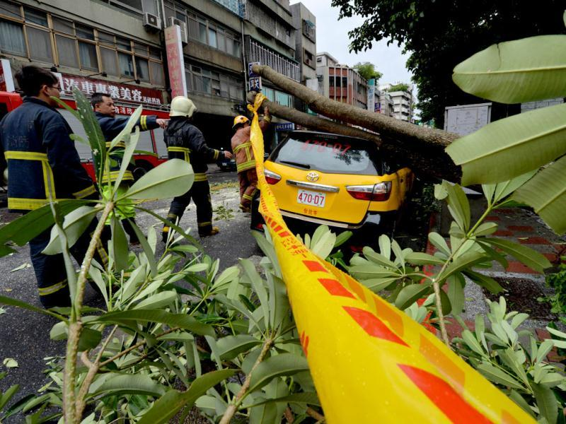 Police and firemen attempt to remove a tree that crushed a taxi after Typhoon Soulik hit Taipei. (AFP Photo)