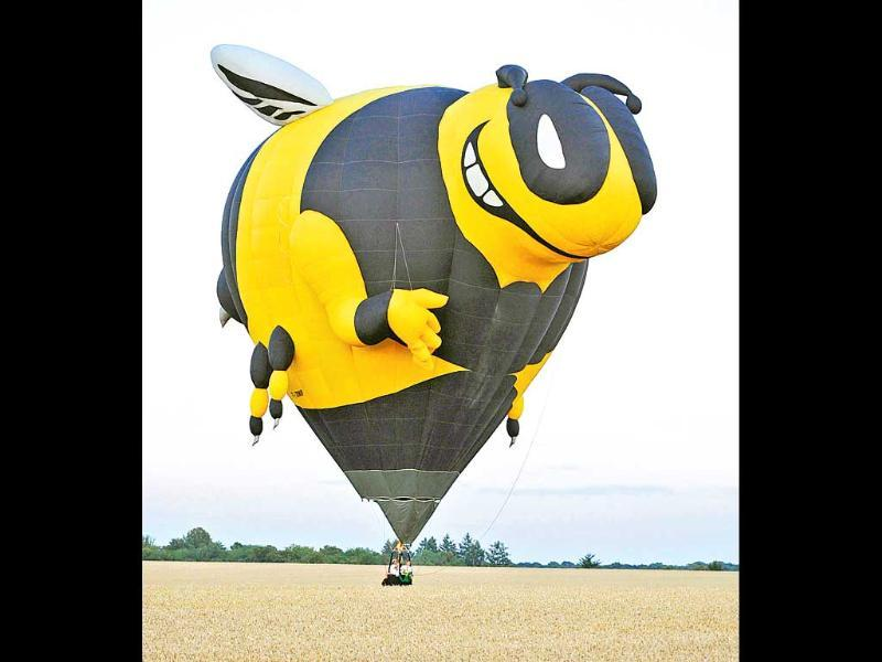 A hot-air balloon shaped as a giant bee is filled with air before flyingover Chambley-Bussieres, eastern France as part of an event trying to set a world record with 408 balloons in the sky, as part of the yearly event