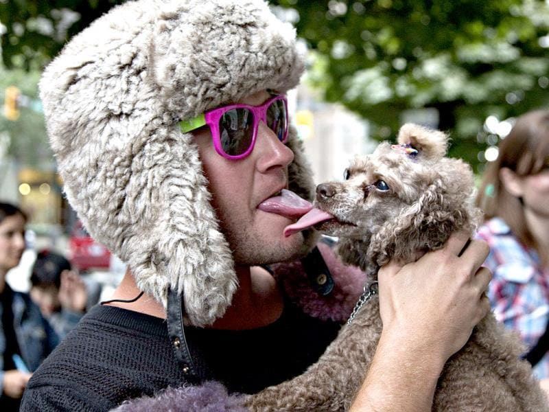 Protester of Russia's recently passed anti-gay laws Greg White kisses his pet dog Kokomo outside the Russian Consulate in Vancouver. (Reuters Photo)