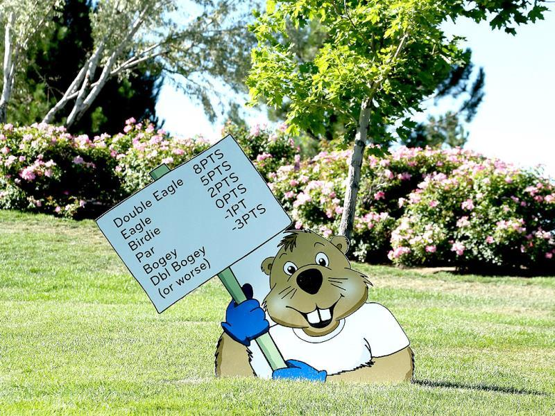A cartoon gopher cutout holds a sign explaning the Modified Stableford scoring system during the second round of the Reno-Tahoe Open at Montreaux Golf and Country Club in Reno, Nevada. (AFP Photo)
