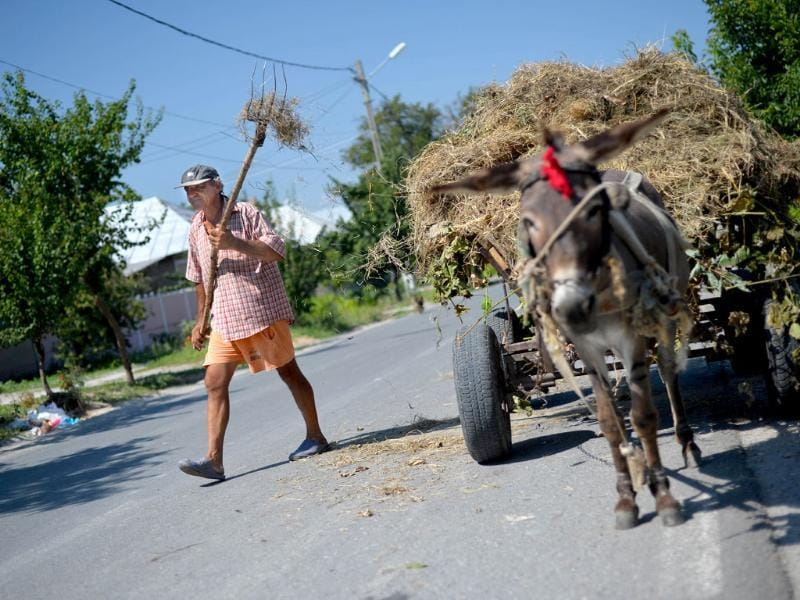 A man walks past his cart in Carcaliu village, Romania. (AFP Photo)