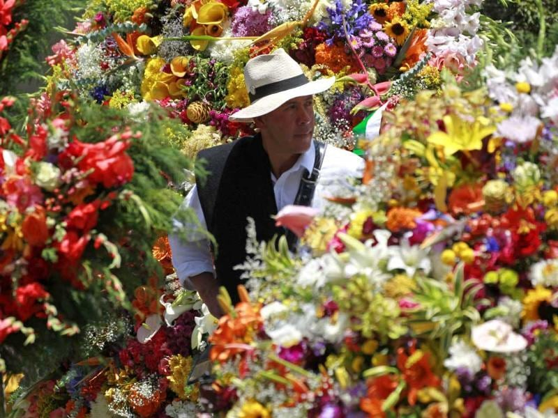 A flower grower, known as a silletero, looks at flower arrangements as he participates in the annual flower parade in Medellin. REUTERS