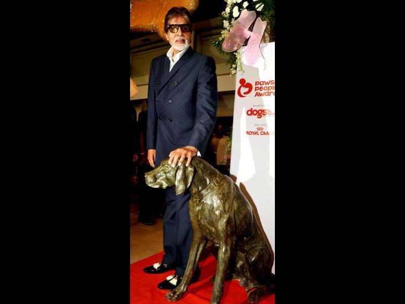 Amitabh Bachchan poses for the lenses at Pawsitive Peoples' Awards. (AFP Photo)