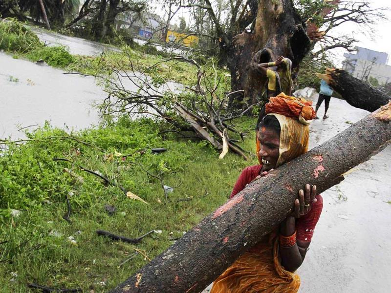 A woman carries away a branch of an uprooted tree post Cyclone Phailin, as municipal workers clear a highway in Berhampur. (AP Photo)