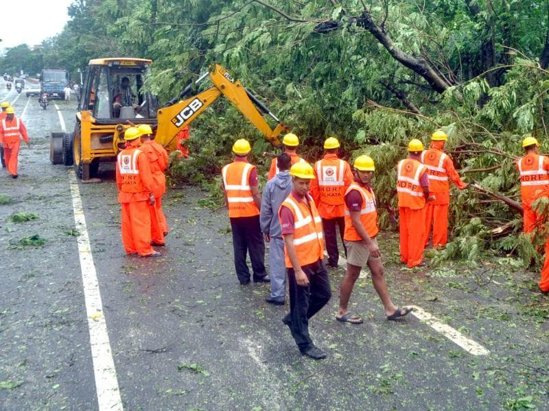 NDRF personnel clearing uprooted trees after Cyclone Phailin struck. (Arabinda Mahapatra/HT)