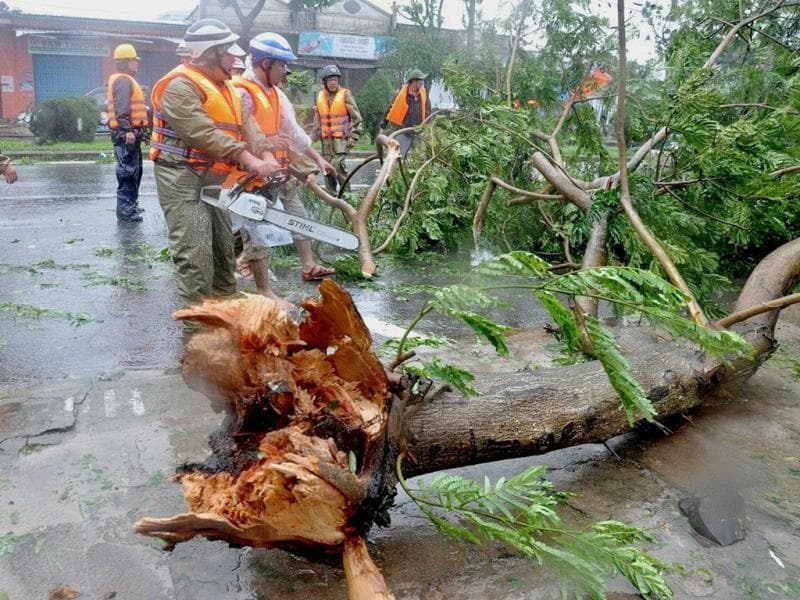 Workers remove fallen trees following the passage of Typhoon Nari in the central coastal city of Da Nang. AFP PHOTO