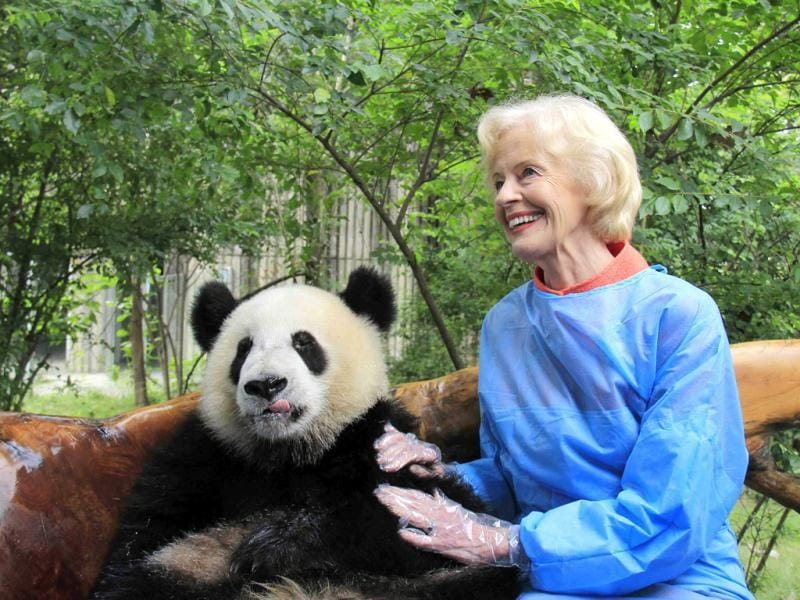 Australia's governor-general Quentin Bryce poses with a giant panda at Chengdu Research Base of Giant Panda Breeding in Chengdu, Sichuan province. (Reuters Photo)