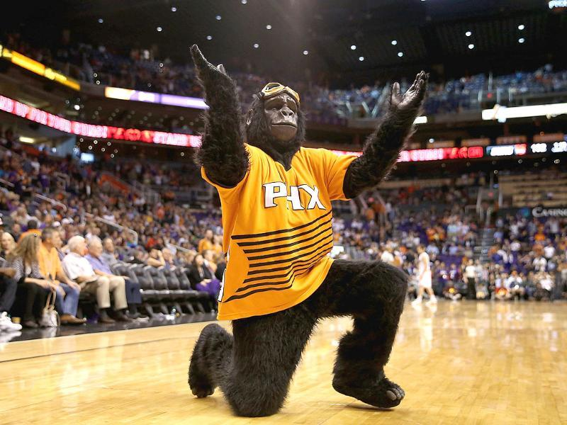 The Phoenix Suns mascot, Gorilla performs during the opening night NBA game against the Portland Trail Blazers at US Airways Center in Phoenix, Arizona. The Suns defeated the Trail Blazers 104-91. AFP
