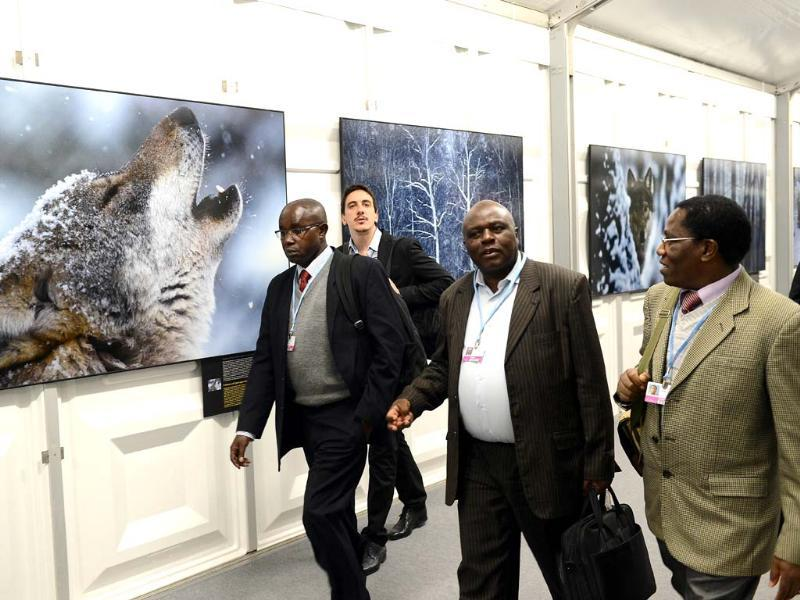 Delegates walk past wildlife photos during the United Nations Climate Change Conference in Warsaw. (AFP Photo)