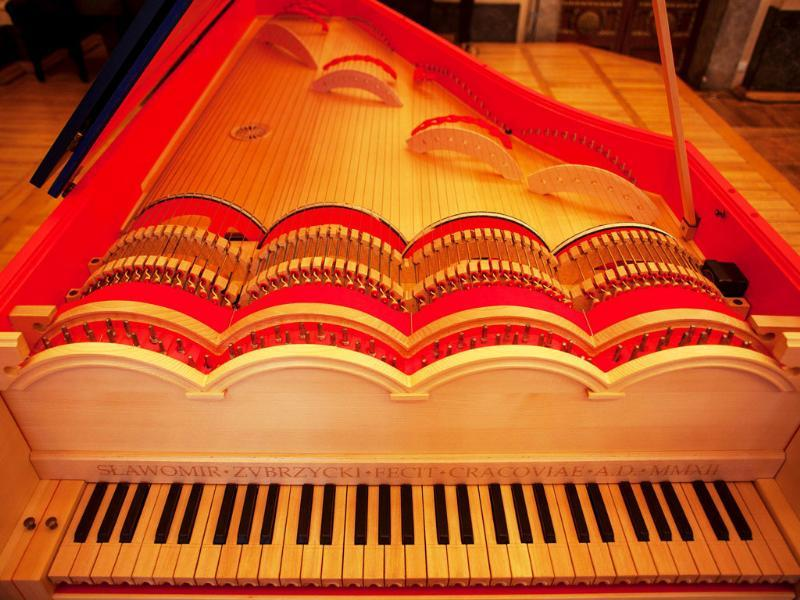 An extremely rare Viola Organista, based on a late 15th-century design by Leonardo da Vinci, was unveiled after being built for three years. (AFP Photo)