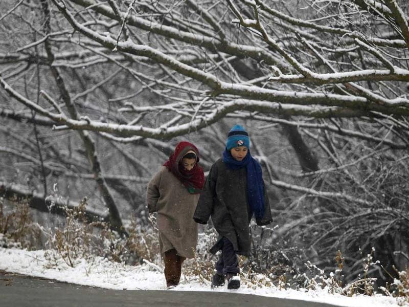 Kashmiri children walk under snow-covered trees during the season's first snowfall on a cold winter morning in Srinagar. (Reuters)