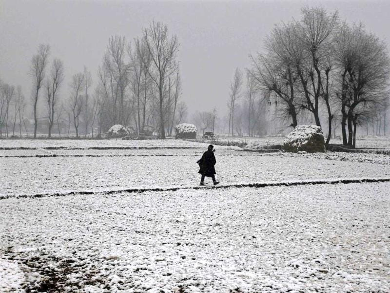 A Kashmiri man walks through a paddy field covered with snow during the season's first snowfall in Srinagar. (Reuters)