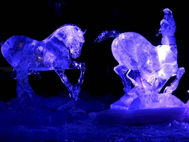 Ice sculptures depicting playing wild horse foals by Mongolian artist Bazarsad Bayarsaikhan pictured during the international ice sculpting festival Art Meets Ice in Korkeasaari Zoo in Helsinki. (AFP Photo)