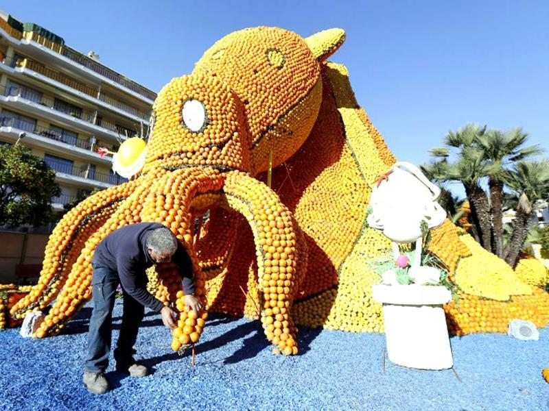 A man works on a sculpture, representing an octopus, made of oranges and lemons in Menton on the French Riviera, ahead of the start of the Fete du Citron (Lemon carnival). (AFP photo)