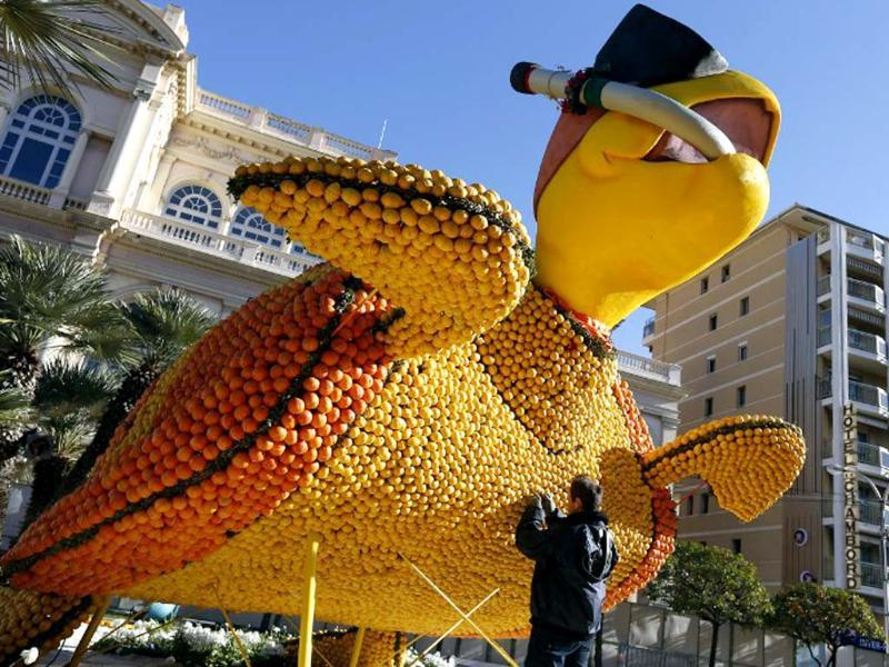 A man works on a sculpture, representing a turtle, made of oranges and lemons in Menton on the French Riviera, ahead of the start of the Fete du Citron (Lemon carnival). (AFP photo)