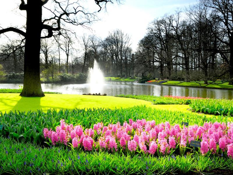 Lisse, Netherlands: The best time to visit Lisse, also known as the Garden of Europe, is May, when the town erupts in hyacinths, daffodils, orchids and lilies during the annual Flower Parade. Lisse is a short half-hour drive outside Amsterdam. (AFP)