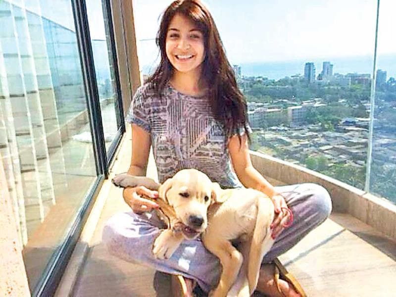 Anushka Sharma's dog is called Dude. Anushka calls it the apple of her eyes and the love of her life.