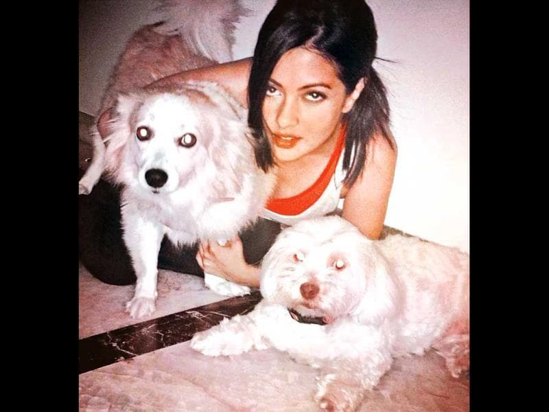 Tashi Sen and Poochie Sen is what Actor Riya Sen likes to call her canines.