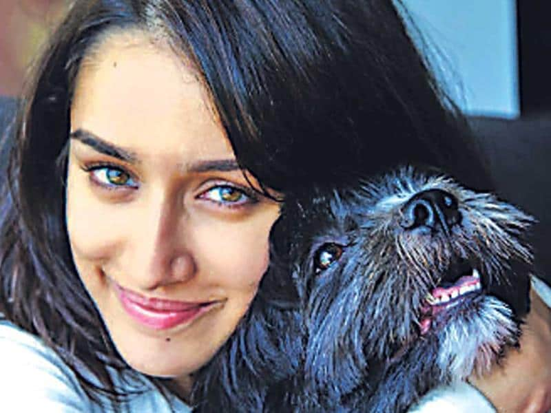 Actor Shraddha Kapoor has an adorable dog, Shyloh, who recently turned three.