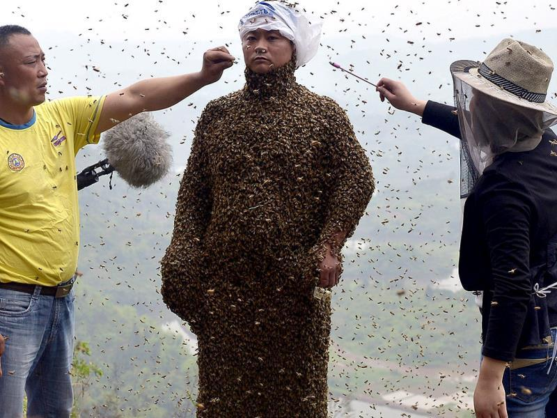 Assistants use burning incense and cigarettes to drive bees away from the face of She Ping, during an attempt to cover She's body with bees, in Chongqing municipality (Reuters Photo)