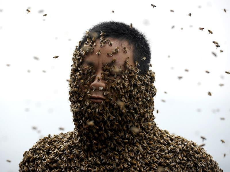 She Ping, a 34-year-old beekeeper, is seen during an attempt to cover his body with bees, in Chongqing municipality (Reuters Photo)