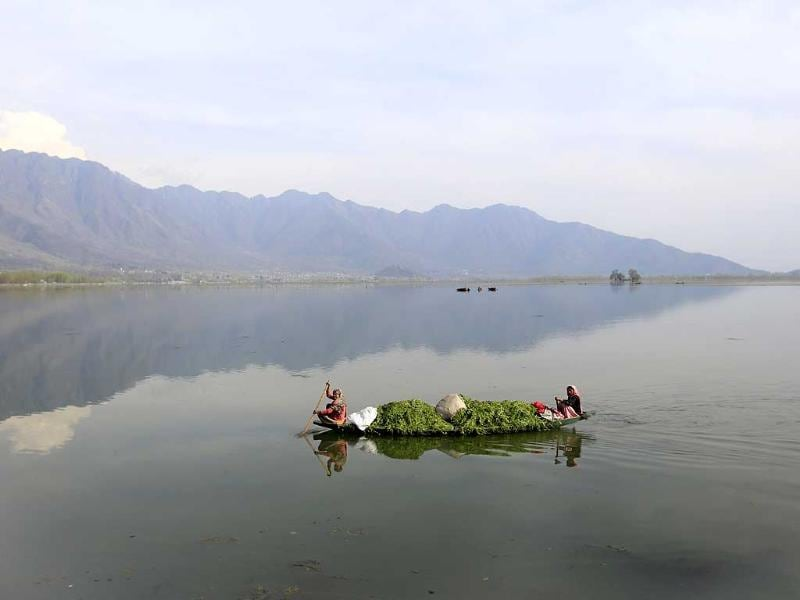 Kashmiri women row a boat filled with weed after cleaning the Dal Lake on Earth Day, on the outskirts of Srinagar. (AP photo)