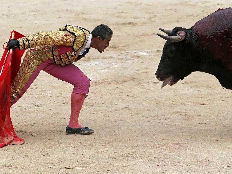 French bullfighter Mehdi Savalli taunts a bull in the arena during the traditional Easter Feria in Arles, Southern France (Reuters Photo)