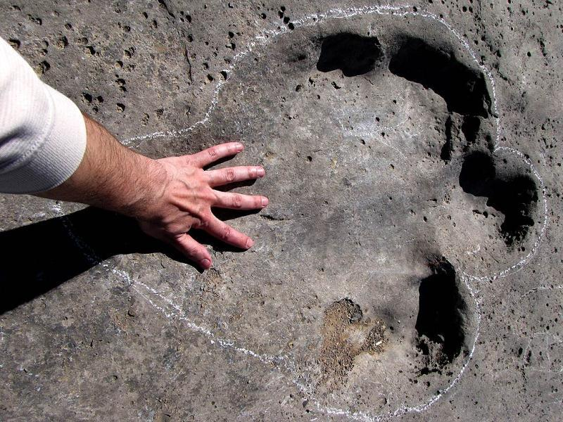 A man touches one of the fossilised dinosaur tracks on Turkmenistan's Plateau of the Dinosaurs (AFP Photo)