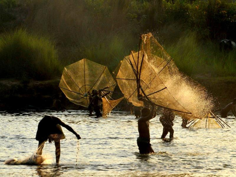 Indian villagers participate in an annual fishing festival at Haripur in Bhargavi River, on the outskirts of Bhubaneswar. (AFP Photo)
