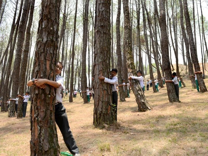 Nepalese school children hug trees in a bid to set a new world record in the forest of Gokarna village, on the outskirts of Kathmandu. Previous record of the largest tree hug record was set in July 2013 in the US when 936 people hugged trees. (AFP Photo)