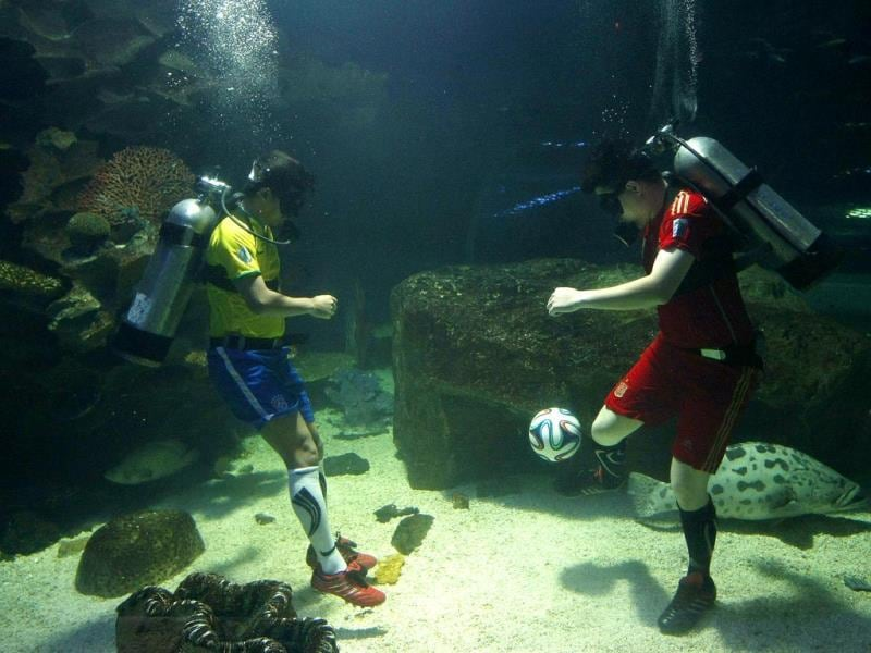 Thai zookeeper wear jerseys of the national soccer teams of Brazil (L) and Spain (R) as they play soccer to promote the upcoming FIFA World Cup 2014 in the aquarium of the zoo in Chiang Mai, northern Thailand. (EPA Photo)