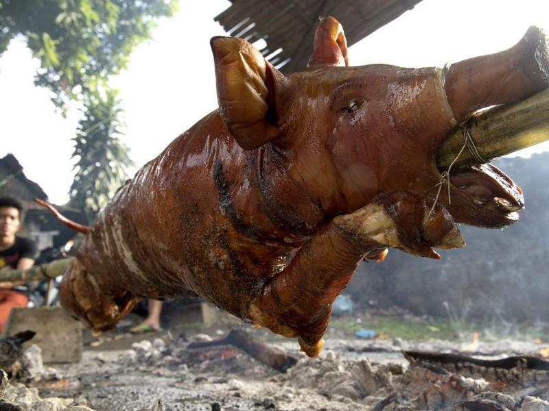 A pig is roasted during a festival in Balayan, Batangas province, south of Manila to celebrate the feast of St John the Baptist. Roasted pigs decked out as superheroes and mud-coated farmers paraded in Philippine villages to mark some of the Catholic nation's most colourful religious festivals and several thousand revellers marched behind mini-trucks carrying roasted hogs through Balayan, with bystanders periodically dousing the raucous procession with buckets of water. (AFP PHOTO)