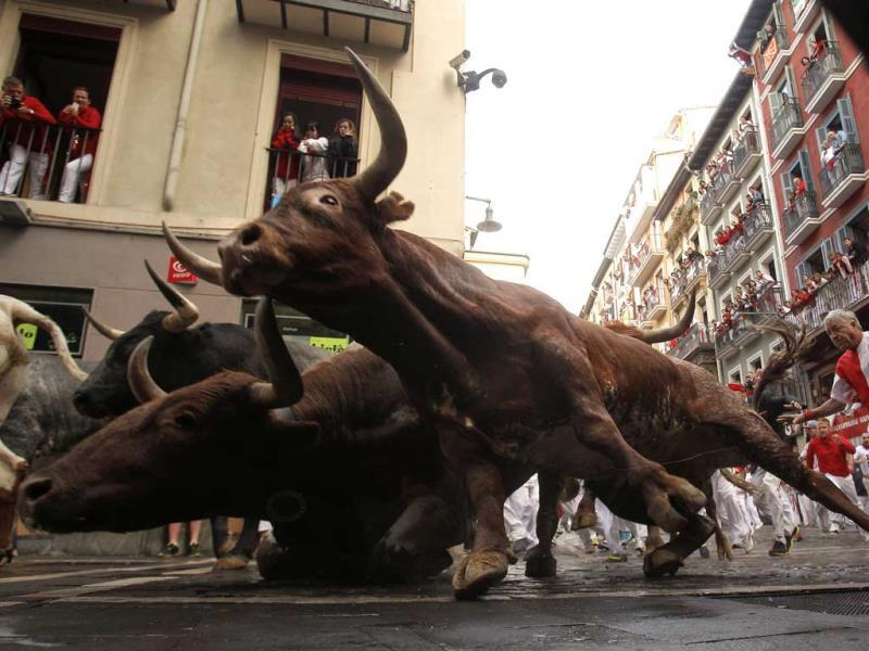 Revelers run as Miura fighting bulls fall during the running of the bulls at the San Fermin festival, in Pamplona, Spain. (AP Photo)