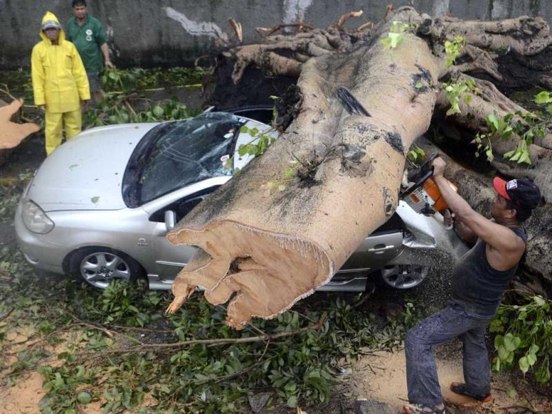 A worker uses an electric saw to remove a huge tree that fell on top of a car during the onslaught of Typhoon Rammasun, (locally named Glenda) that hit Makati city in Manila. (Reuters)
