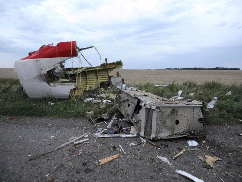 A picture taken on July 17, 2014 shows the wreckages of the malaysian airliner carrying 295 people from Amsterdam to Kuala Lumpur after it crashed, near the town of Shaktarsk, in rebel-held east Ukraine. (AFP)