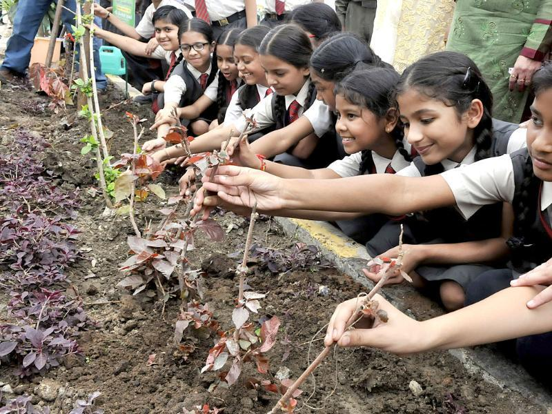 Schoolchildren plant saplings in Indore under a government programme which aims to plant one crore saplings in MP. (Arun Mondhe/HT photo)