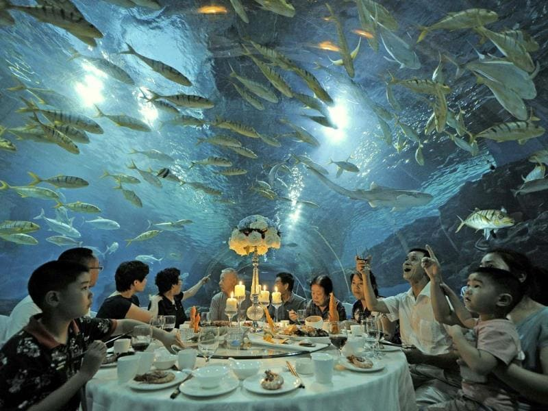 Tourists have dinner as fish swim around them, at the Tianjin Haichang Polar Ocean World in Tianjin. (Reuters Photo)