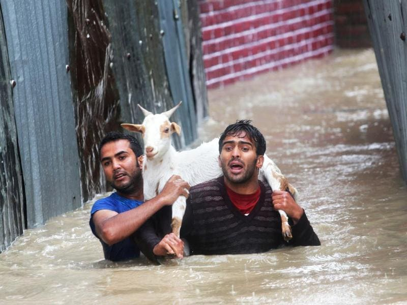 Kashmiri residents carrying a goat wade through floodwaters in Srinagar.(AP Photo)