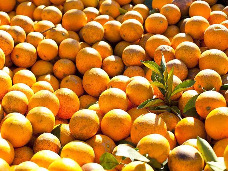 Orange: Like most citrus fruits, it contains vitamin C along with beta carotene, folic acid, phosphates, iodides, iron, phytonutrients and flavonoids that help to treat dark spots and blemishes. The orange peel can be powdered and used as a scrub for instant glow and skin whitening as it acts as a natural bleach.