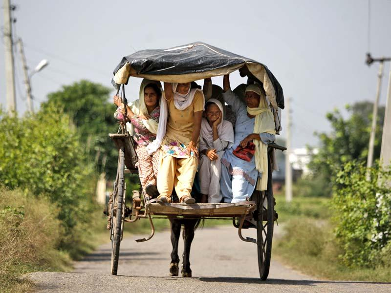 Villagers return to their homes in a horse cart during a lull of shelling between India and Pakistan at the border area of Abdullian village in Ranbir Singh Pura, Jammu. (AP Photo)