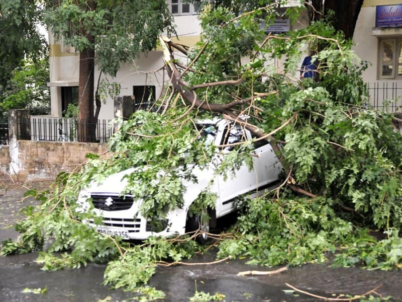 Branch of a tree fell on a car near 45 Bungalows in Bhopal on Saturday evening after heavy rain and storm lashed the city. (Praveen Bajpai/HT photo)