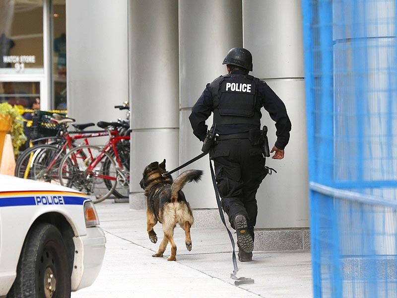 An Ottawa police officer and service dog run up Metcalfe Street following the shootings. (Reuters)