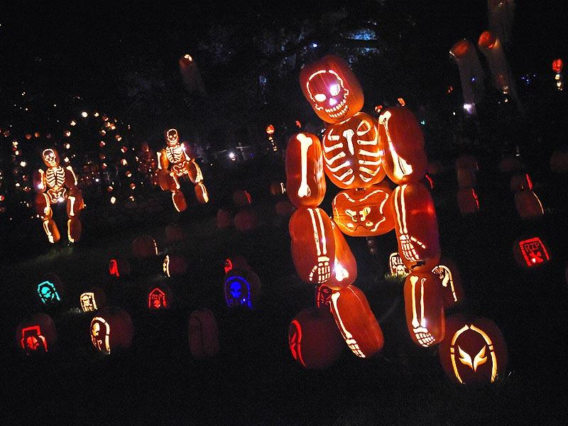 Here is a skeletal figure made entirely from pumpkins.