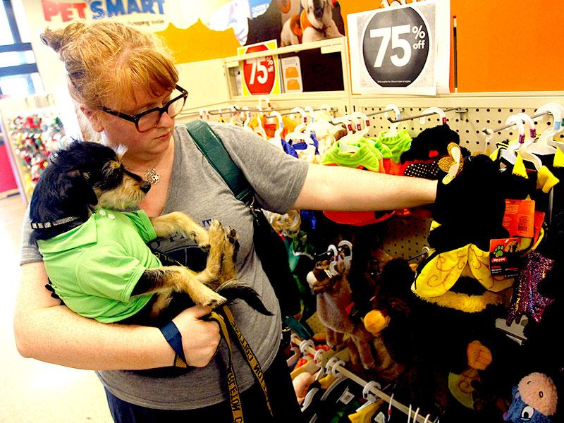 Emily Newman and her dog Fred check out all the goodies at a PetSmart event in the Dallas area. (AP Photo/Richard W. Rodriguez)