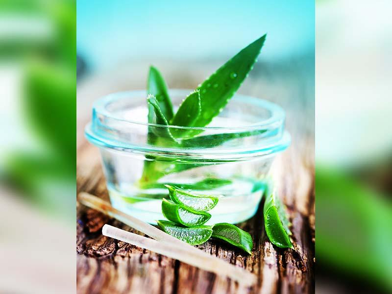 Aloe-vera pack: Aloe-vera helps in getting rid of scalp­ infections and is a very­ effective moisturiser for a dry and scaly scalp. It also helps keep your scalp cool. Take fresh aloe vera juice, apply on the scalp and leave it on for 2-3 hours. Rinse well.